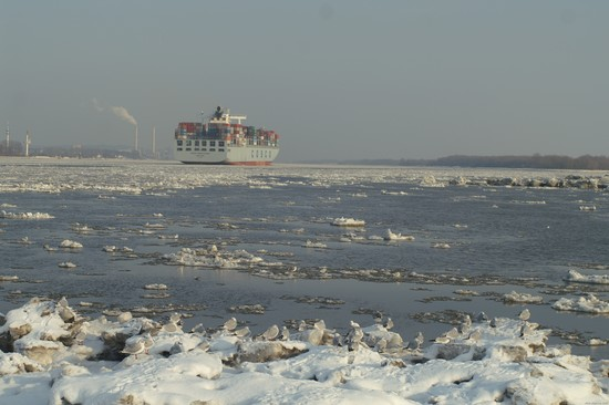 Elbe im Winter 2010