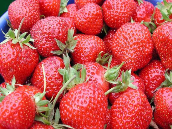 genußreife Erdbeeren